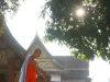Buddist Monk, Luang Prabang, Laos